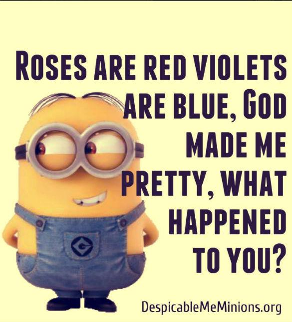 Birthday Funny Minion Quote Pictures Photos And Images: Minions Despicable Me Quotes. QuotesGram