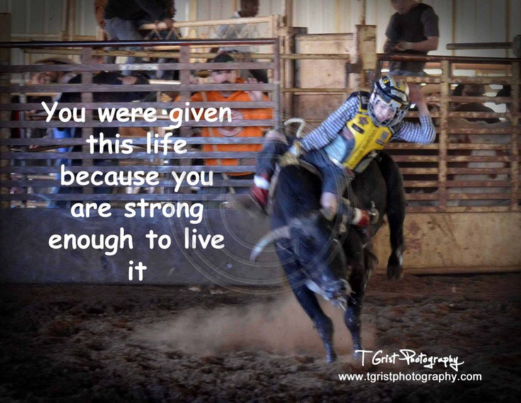 Funny Bull Riding Quotes: Cowboy Quotes To Live By. QuotesGram