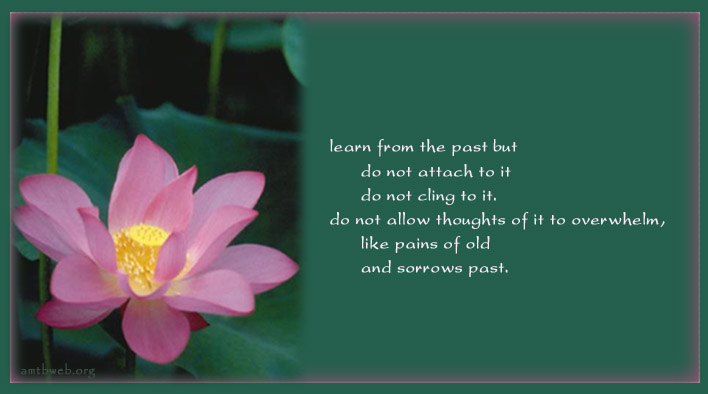 inspirational quotes about letting go of past quotesgram