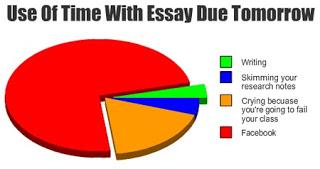 Informational essay   Order Custom Essay