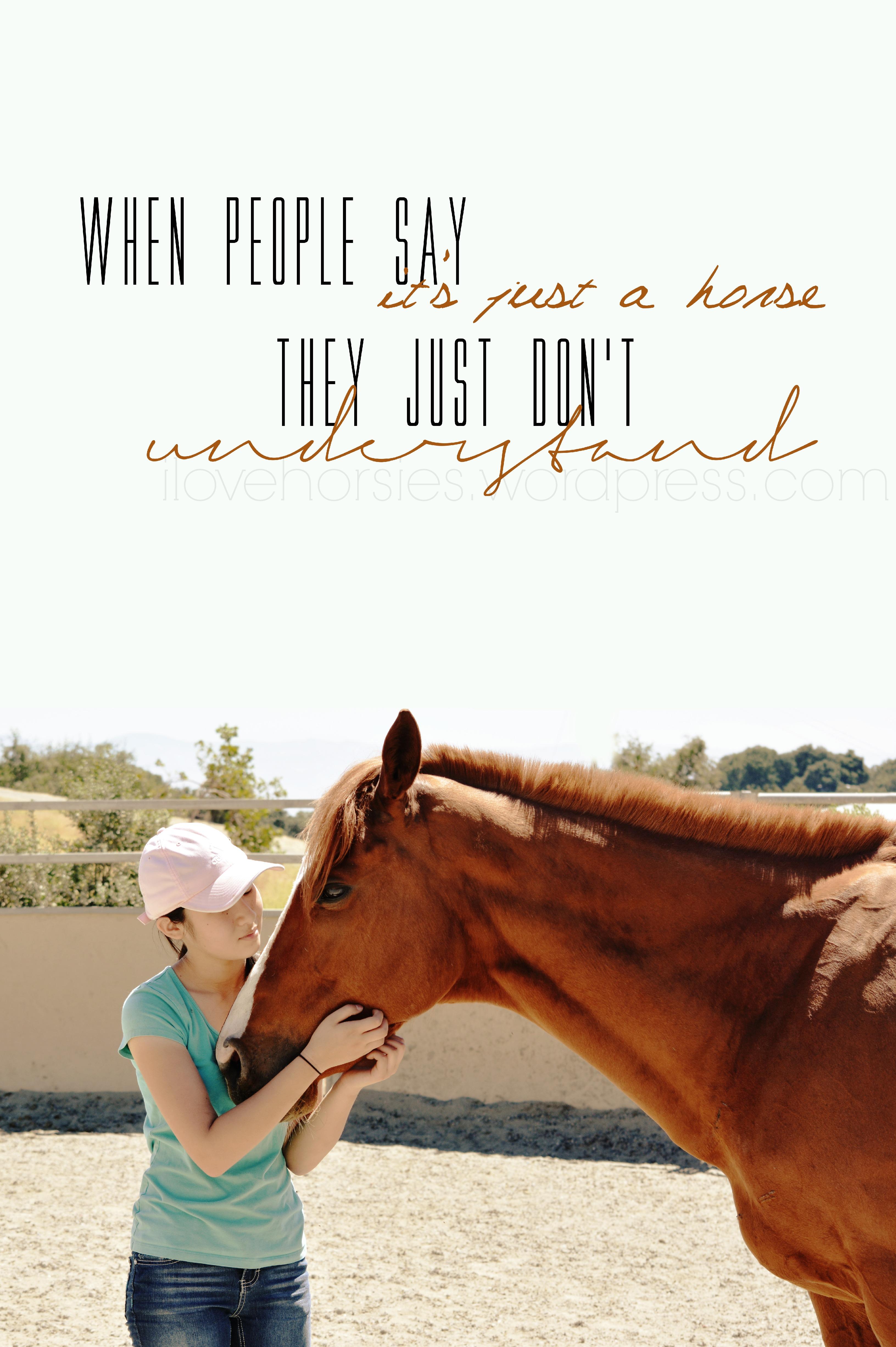 Horse Quotes For Instagram. QuotesGram