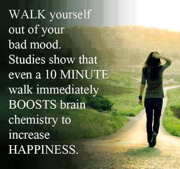 Quotes Nature Walk Quotesgram