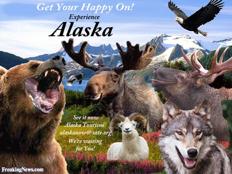 Alaska Quotes Looking For Alaska: Alaska Funny Quotes. QuotesGram
