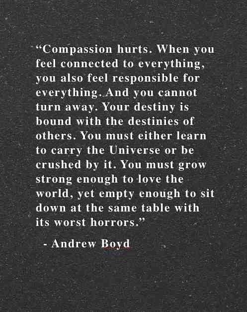 Inspirational Meme About Compassion: Compassion Quotes About Feeling. QuotesGram