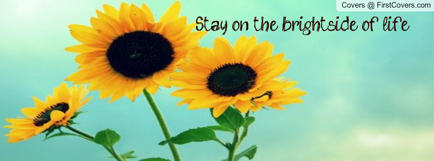 sunflowers cover pictures with quotes quotesgram