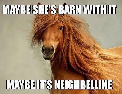 Funny Barn Quotes. QuotesGram