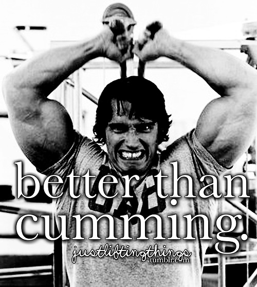 Quotes From Pumping Iron Arnold. QuotesGram