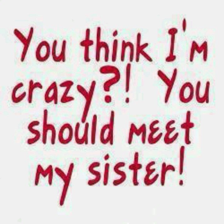 Images Of Quotes About Sisters: Twin Sister Funny Quotes. QuotesGram