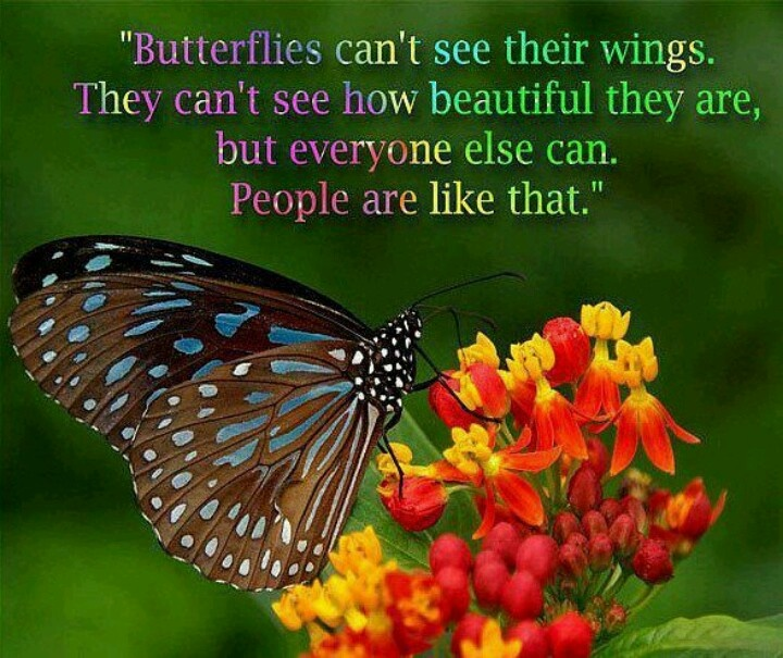 Spiritual Butterfly Quotes: Inspirational Quotes About Butterflies. QuotesGram