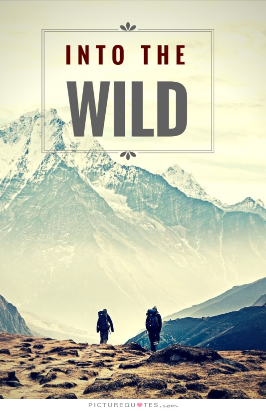 Into The Wild Famous Quotes Quotesgram
