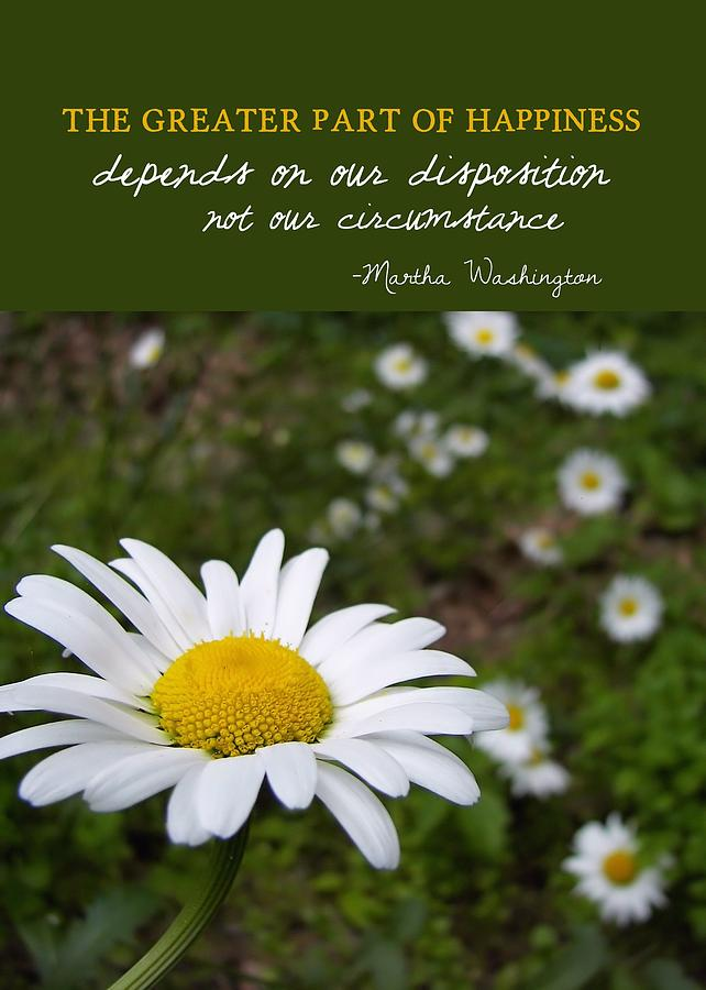 Daisies Quot... Poems About Daisy Flowers