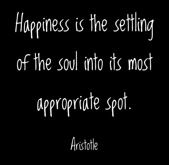 Soul Quotes Happy Quotesgram