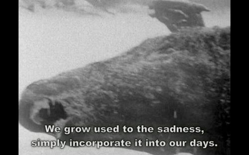 Sad Quotes About Depression: Sad Quotes Black And White. QuotesGram