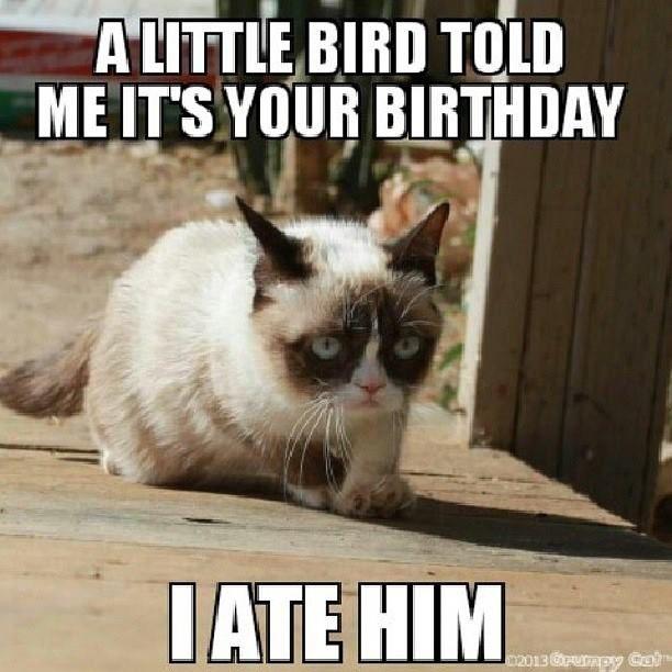 Happy 64 Birthday Quotes: Happy 62nd Birthday Quotes Funny. QuotesGram