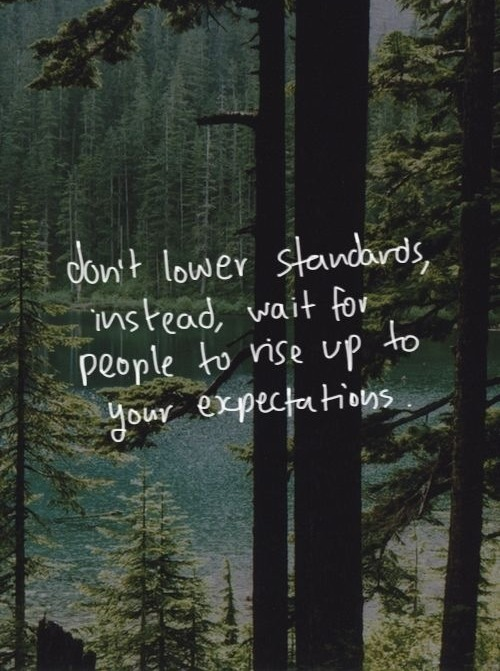 Forest Woods And Quotes Quotesgram
