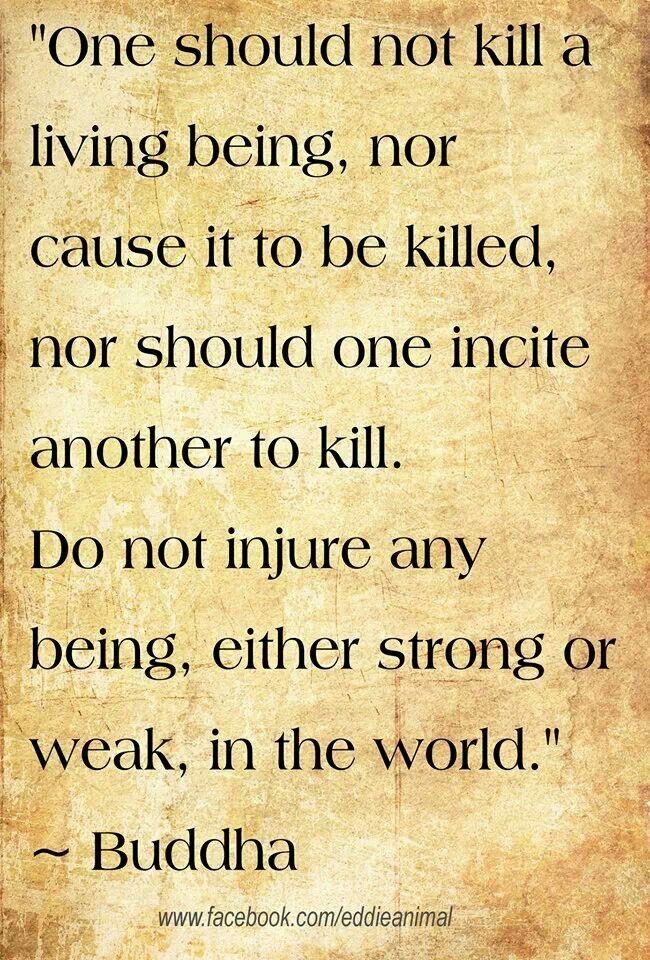 Vegetarian Buddha Quotes Quotesgram