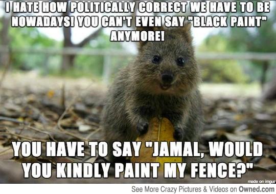 Anti Political Correctness Quotes. QuotesGram