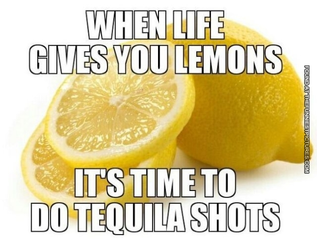 When Life Gives You Lemons Funny Quotes. QuotesGram