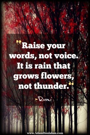 Raise Your Voice Quotes. QuotesGram