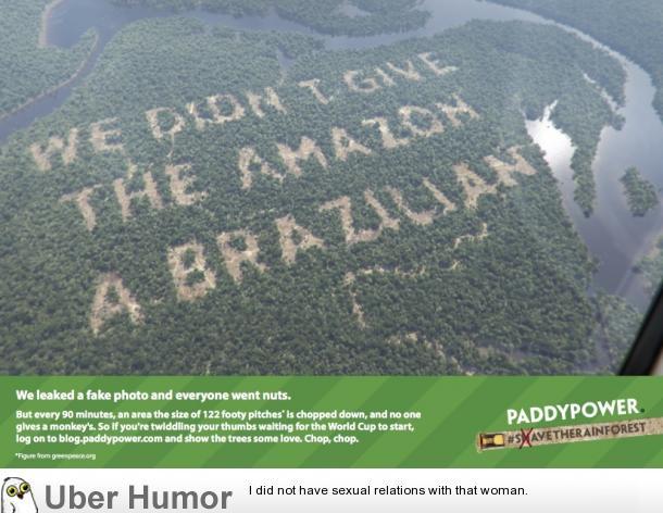 quotes about the rainforest animals quotesgram