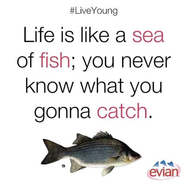 Plenty of fish quotes quotesgram for Planty of fish
