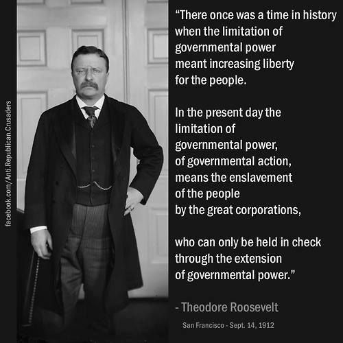theodore roosevelt quotes on government quotesgram
