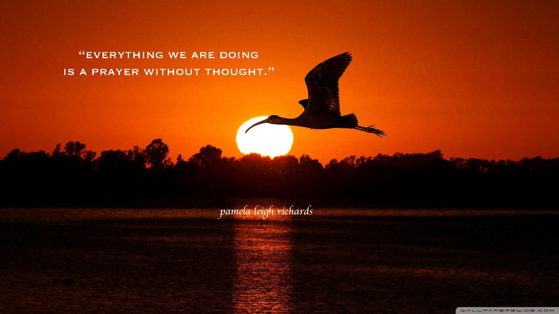 Quotes About Love And Birds Quotesgram: Birds In Flight Quotes. QuotesGram