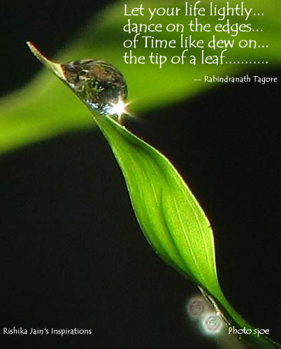 Quotes About Dew Drops. QuotesGram