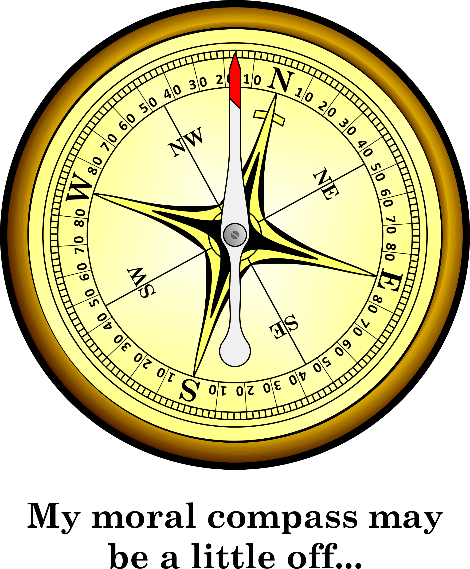 "my professional moral compass essay Write a paper of 750-1,000 words in which you describe your professional moral compass topic: ""my nursing ethic"" order description."