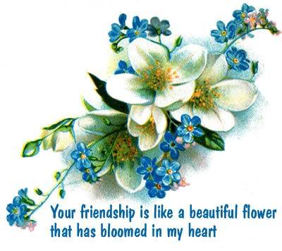 Friendship Quotes Like A Flower. QuotesGram