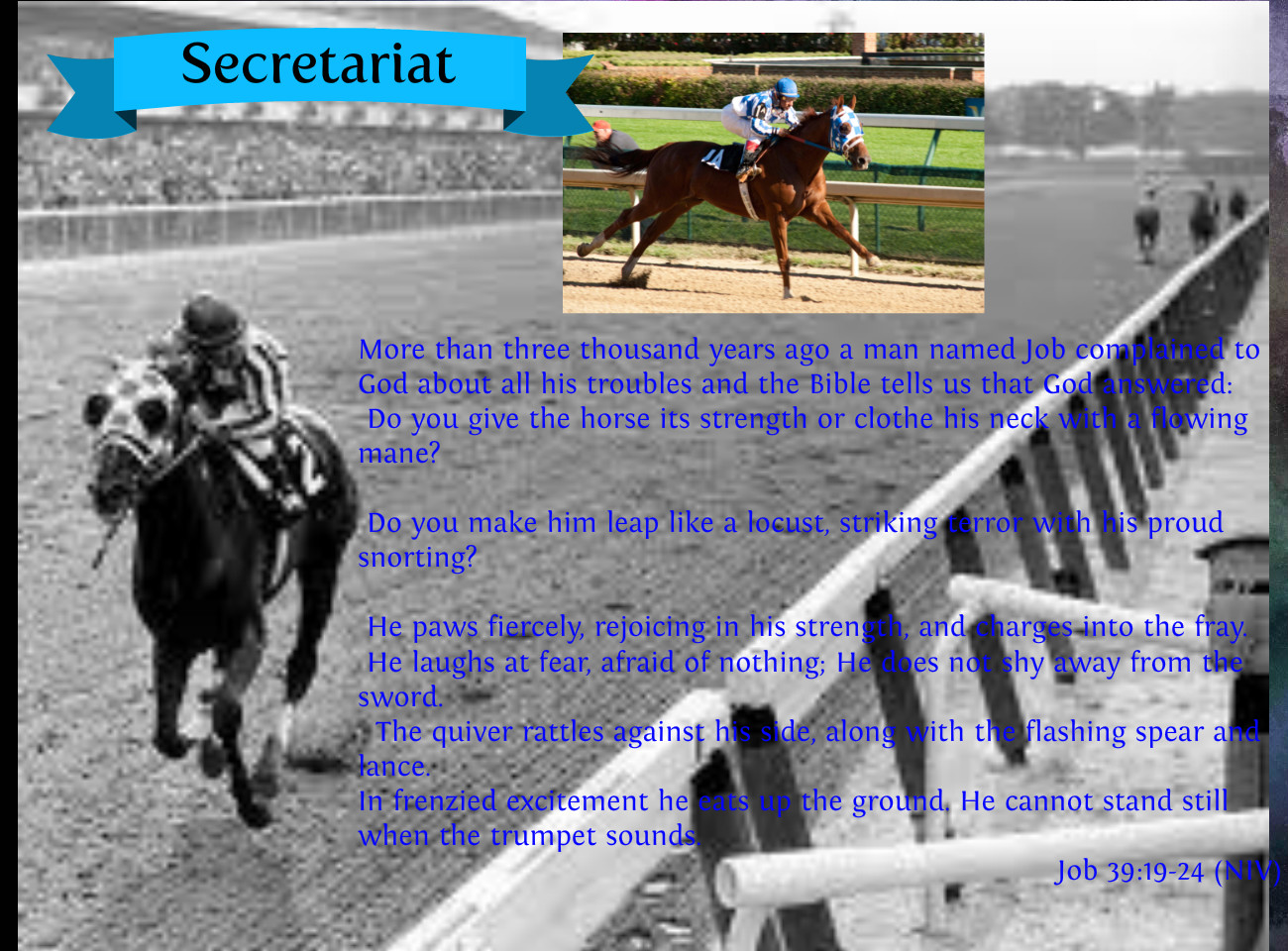 Quotes From Secretariat Horse Racing. QuotesGram