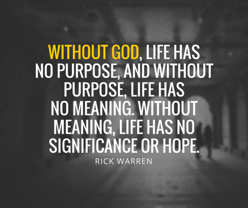 What Is The Meaning Of Life Quotes: No Purpose In Life Quotes. QuotesGram