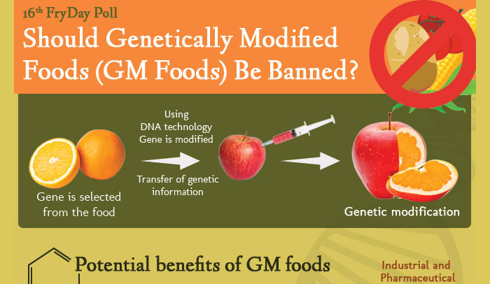 Genetically modified food benefits essay help