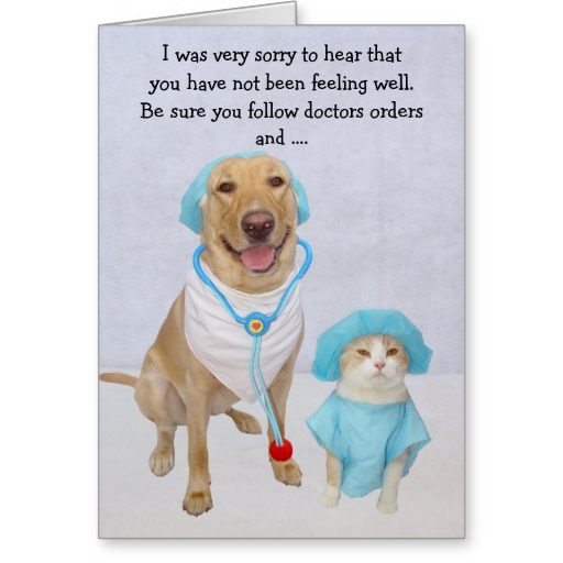 Funny Dog Get Well Cards