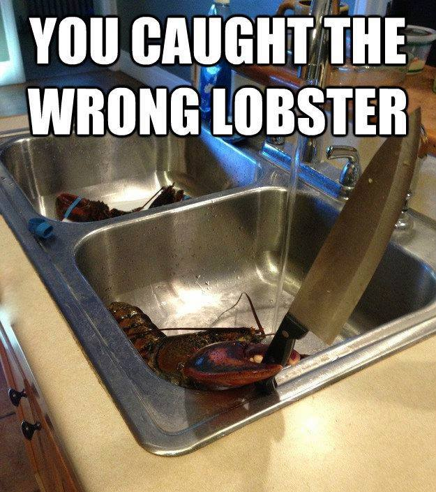 Lobster Funny Quotes. QuotesGram