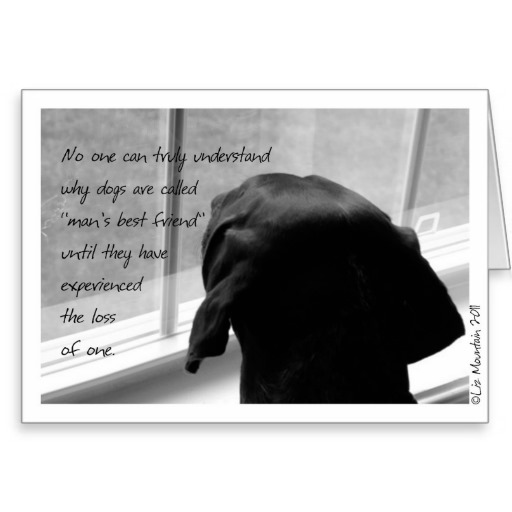 Sympathy Dog Quotes: Sympathy Quotes For Loss Of Dog. QuotesGram