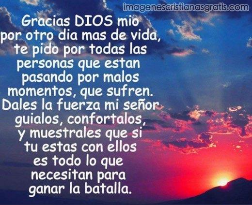 Frase De Agradecimento A Dios: Buenas Noches Senor Jesus Quotes. QuotesGram