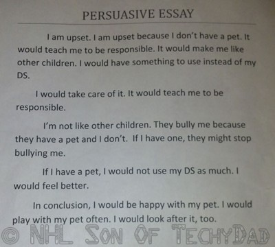 buy a descriptive essay