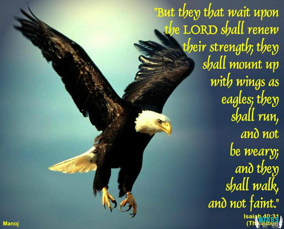 Bible Quotes About Eagles. QuotesGram