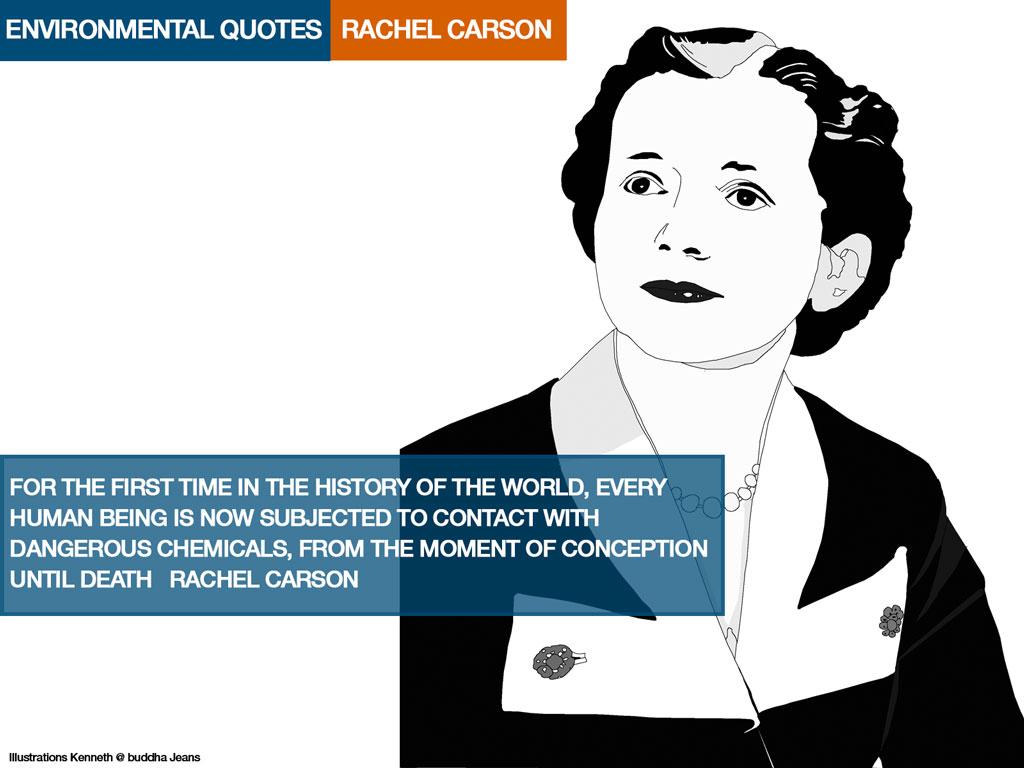 Rachel Carson Quotes On Trees. QuotesGram