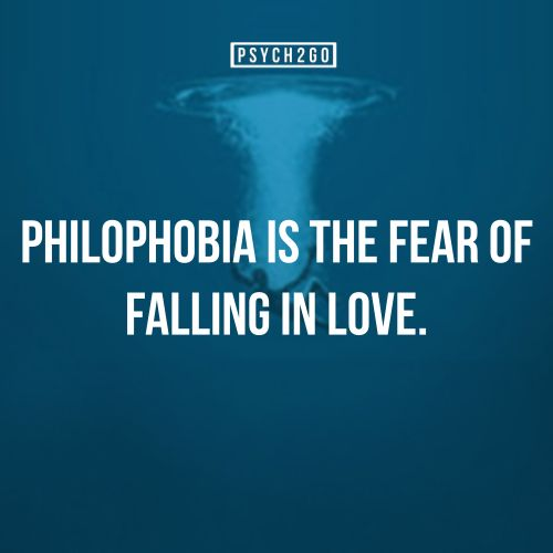 Quotes About Being Afraid To Love: Afraid To Fall In Love Quotes. QuotesGram