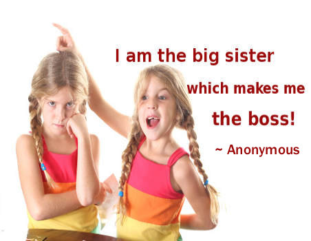 Twin Sister Funny Quotes. QuotesGram