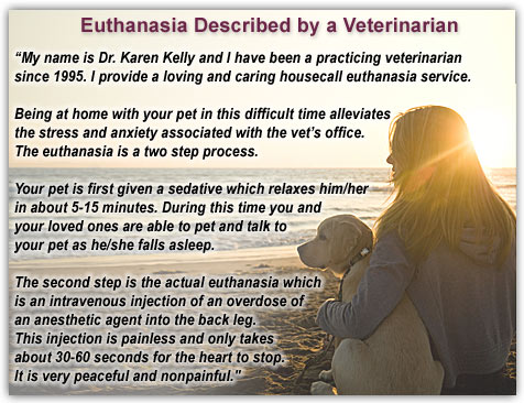 buddhism in euthanasia In this week's class at sacred waters, a question was raised about the buddhist view on reducing suffering for the terminally ill and on euthanasia.