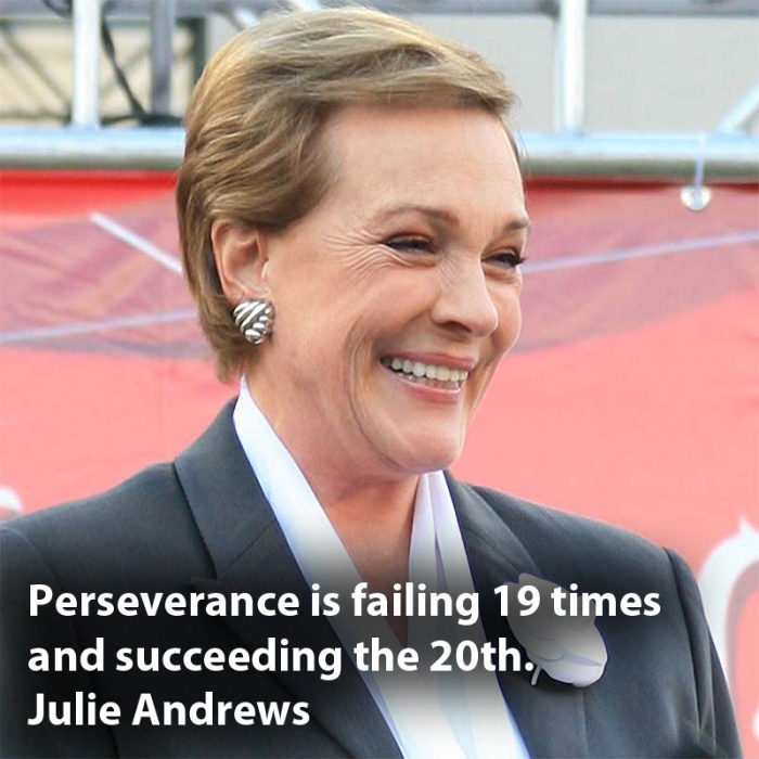Persistence Motivational Quotes: Perseverance Quotes By Famous People. QuotesGram