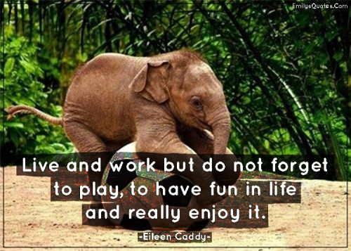 Famous Quotes About Playing And Having Fun. QuotesGram