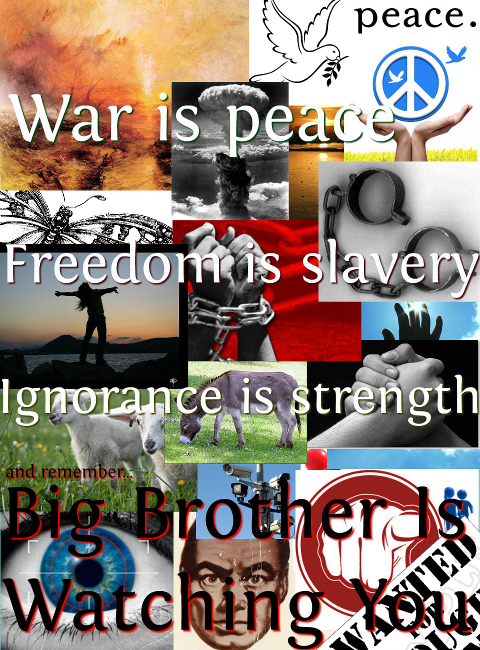 propaganda in 1984 The ruling party produces propaganda to promote big brother and to control its citizens in '1984,' a novel by george orwell the party ensures that.