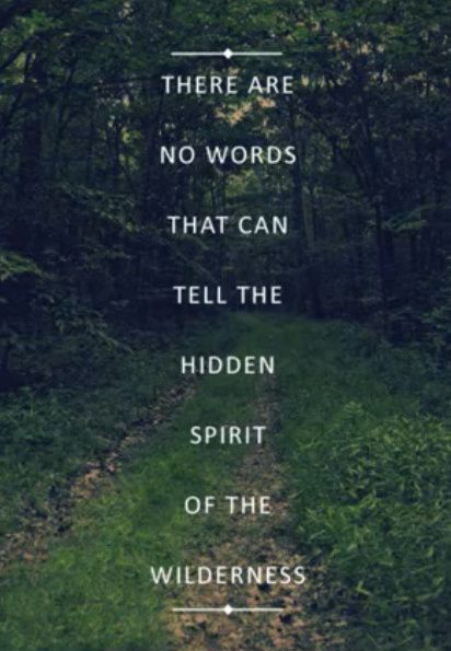 spiritual wilderness picture quotes quotesgram