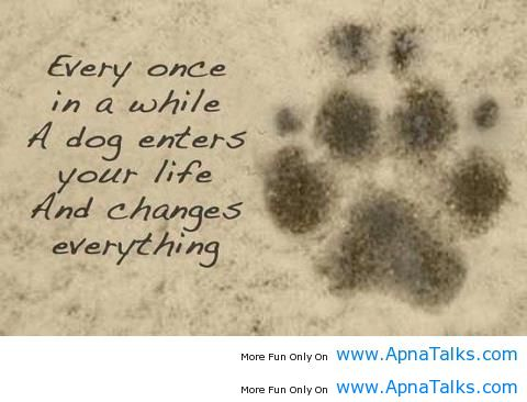 Best Loyal Dog Quotes