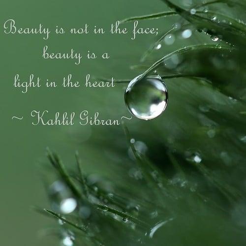 Romanticism Quotes On Nature Quotesgram