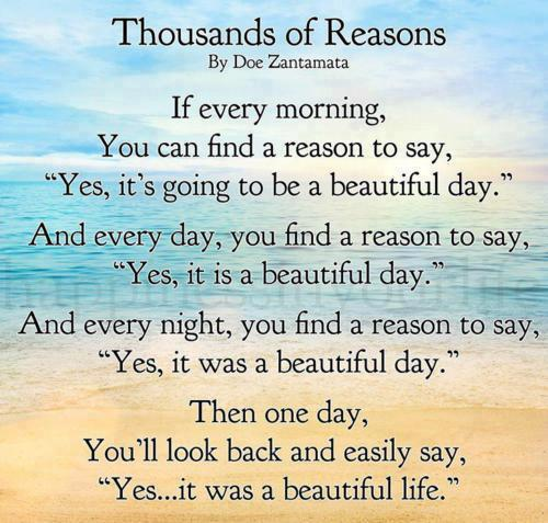 Wonderful Quotes For Successful Life: Beautiful Day Quotes Funny. QuotesGram